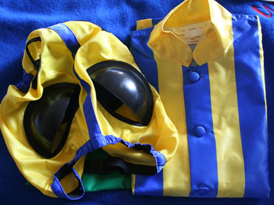 race silks and race blinkers yellow bound royal