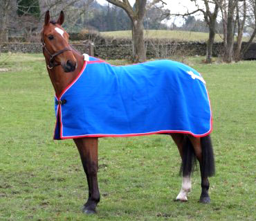 personalised show rug