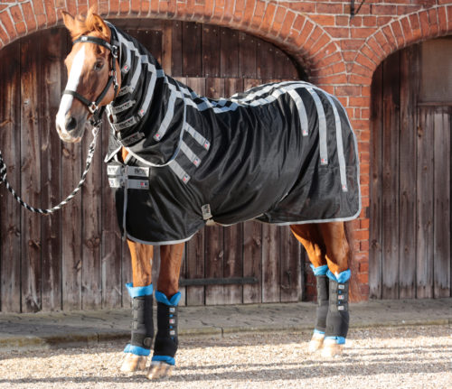 Therapy and magnetic products for horses